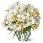 ดอกไม้สวยๆ อวยพรวันเกิด แบบที่ (25)