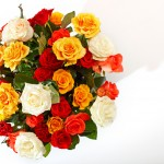 ดอกไม้สวยๆ อวยพรวันเกิด แบบที่ (27)