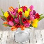 ดอกไม้สวยๆ อวยพรวันเกิด แบบที่ (30)