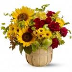 ดอกไม้สวยๆ อวยพรวันเกิด แบบที่ (31)