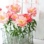 ดอกไม้สวยๆ อวยพรวันเกิด แบบที่ (44)