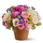 ดอกไม้สวยๆ อวยพรวันเกิด แบบที่ (45)